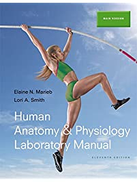 human anatomy and physiology lab manual 11th edition main version