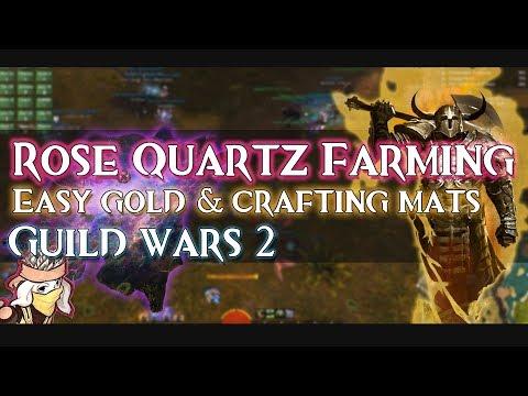guild wars 2 training manual