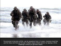 navy seal sniper training manual pdf